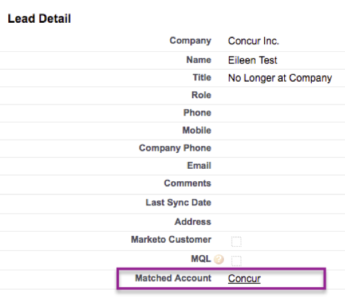 Salesforce: Lead-to-Account Matching Data Activation Flow – Leadspace